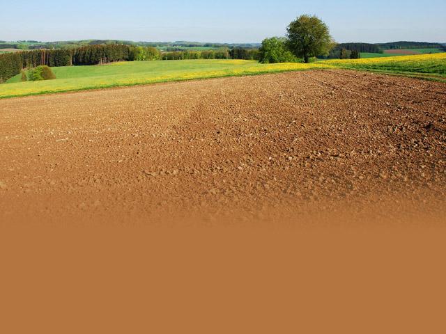 Gospodarstwo Agroturystyczne Na Plebanii