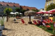Palmy, piasek i leżaki w centrum Gniezna